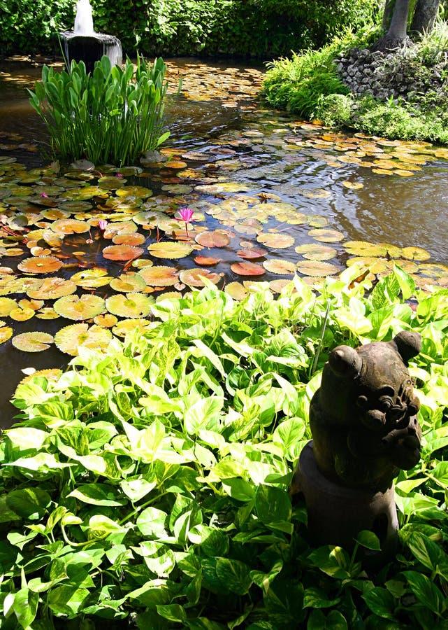 Jardín del agua con el pedazo de piedra de la decoración foto de archivo libre de regalías