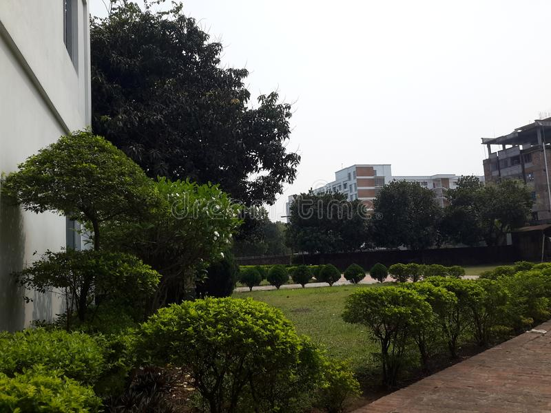 Jardín del campus fotografía de archivo