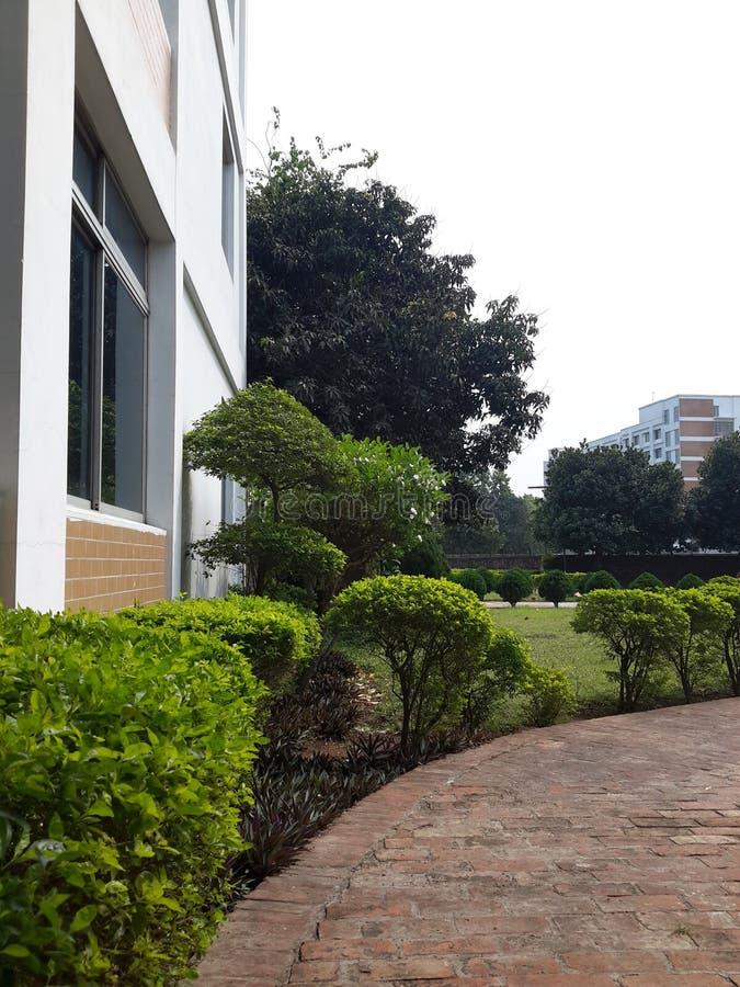 Jardín del campus fotos de archivo libres de regalías