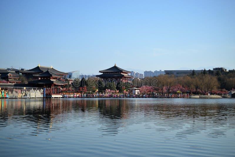 Jardín del furong de Datang con los edificios chinos tradicionales de la dinastía Tang en Xian, Shaanxi, China foto de archivo libre de regalías