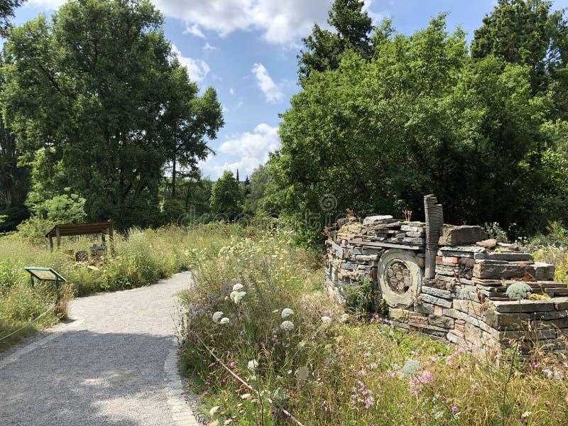 Jardín del insecto o isla Mainau de la flor de Insektengarten en el lago de Constanza o el dado Blumeninsel im Bodensee fotos de archivo