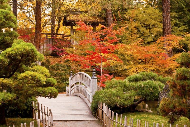 Jardín del japonés del otoño imagen de archivo libre de regalías
