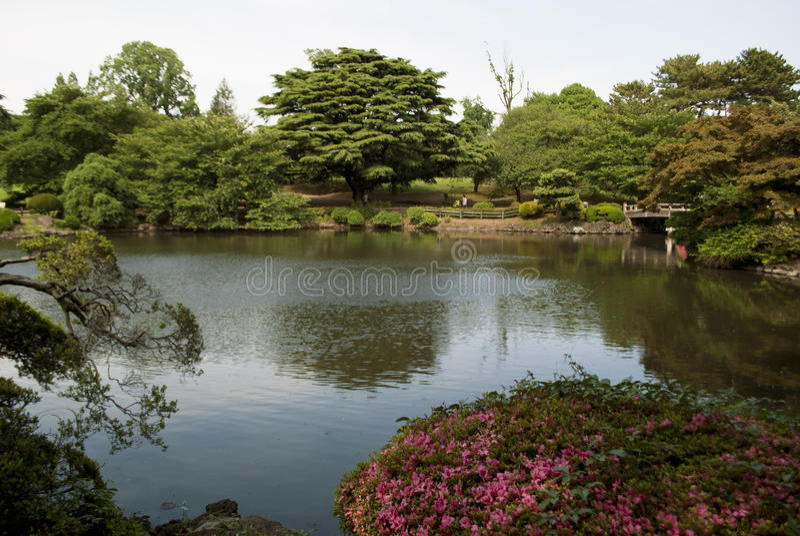 Jardín del nacional de Shinjuku Gyoen fotografía de archivo