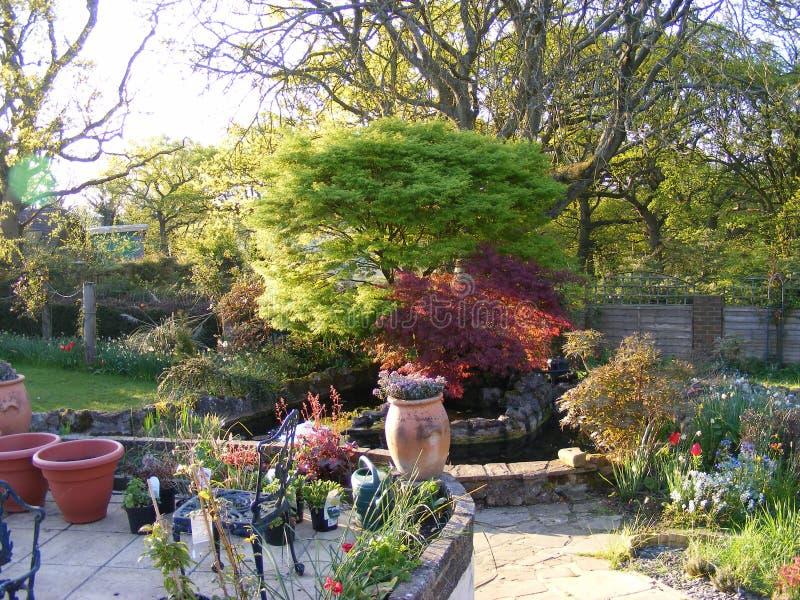 Jardín del patio con los potes de la charca y de la planta del jardín fotos de archivo