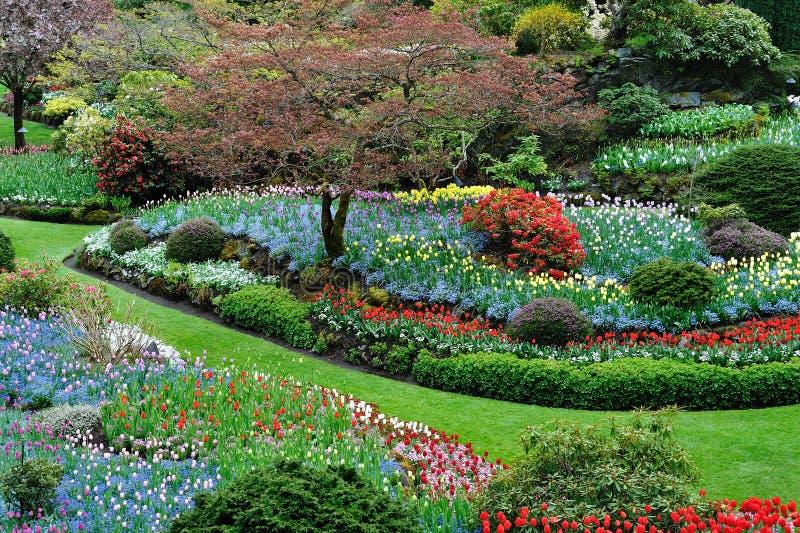 Jardín del resorte fotografía de archivo