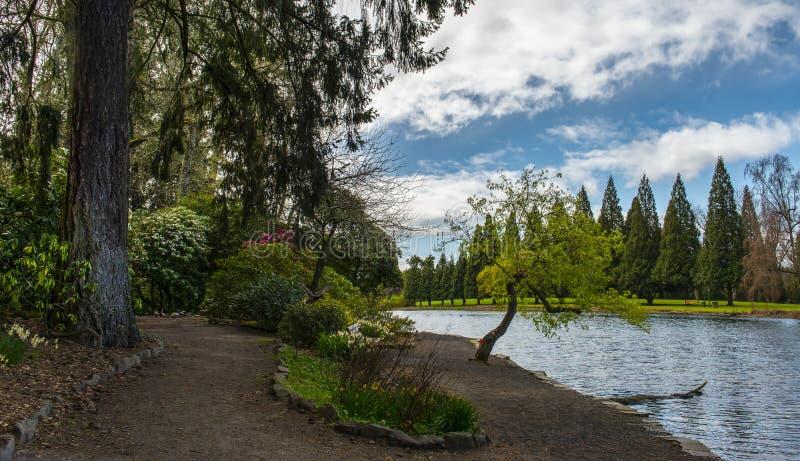 Jardín del rododendro, Portland, O imagen de archivo libre de regalías