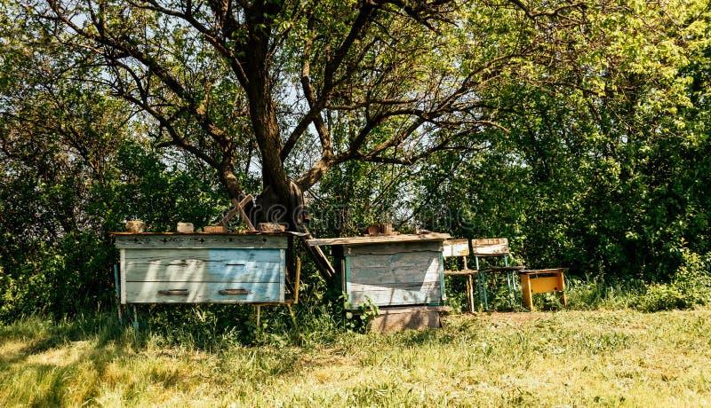 Jardín Demasiado Grande Para Su Edad Viejo De La Primavera Y Muebles ...