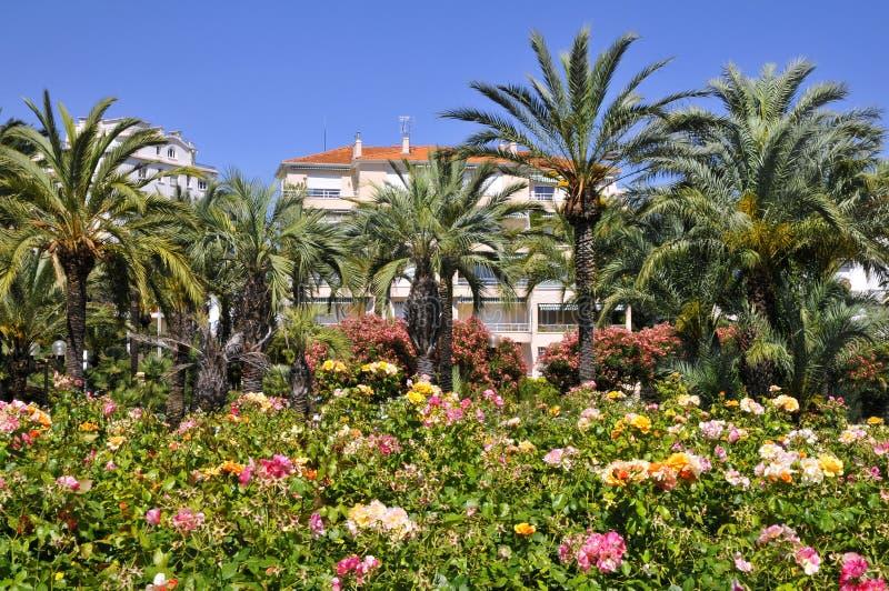 Jardín en Cannes en Francia fotos de archivo libres de regalías