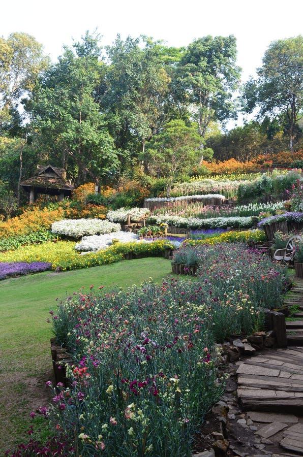 Jardín en Doitung imágenes de archivo libres de regalías