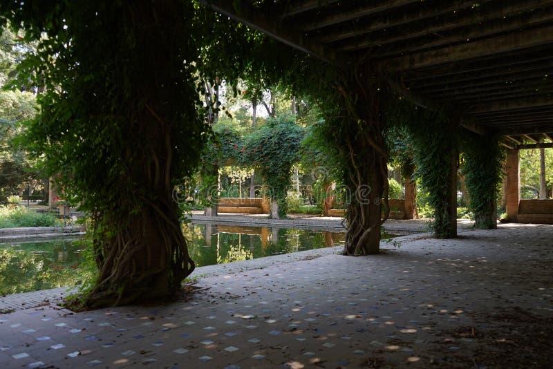 Jardín en el parque Marie Luisa Sevilla Spain imagen de archivo libre de regalías