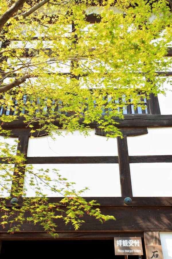 Jardín en el templo de Ryoan-ji fotografía de archivo libre de regalías
