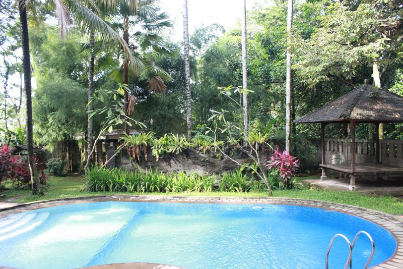 Jardín en piscina lateral fotos de archivo