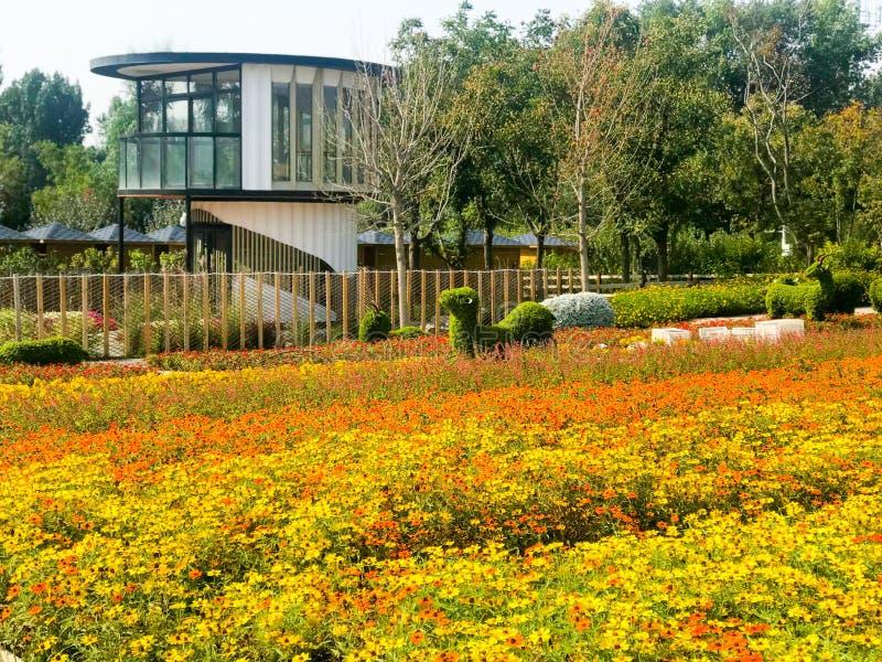 Jardín en primavera imagenes de archivo