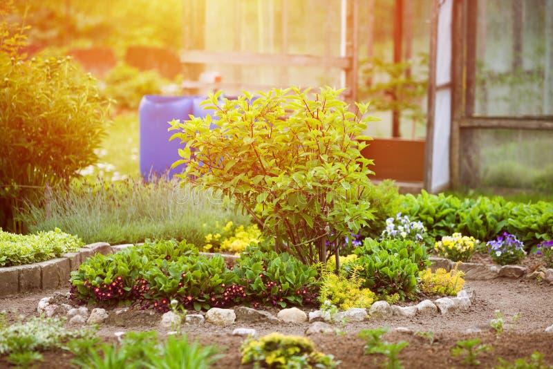 Jardín en primavera en luz del sol Un jardín cuidadosamente mantenido con las flores, verduras, invernadero imagen de archivo
