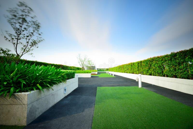 Jardín en tejado fotografía de archivo