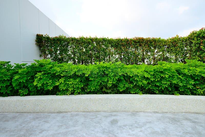 Jardín en tejado imágenes de archivo libres de regalías