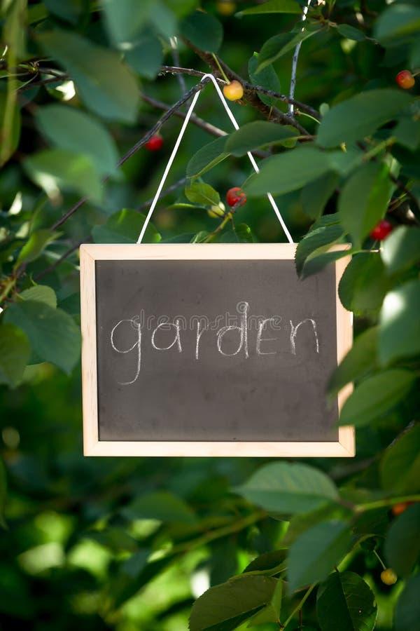 Jardín escrito en la ejecución de la pizarra en árbol en el jardín imagen de archivo libre de regalías