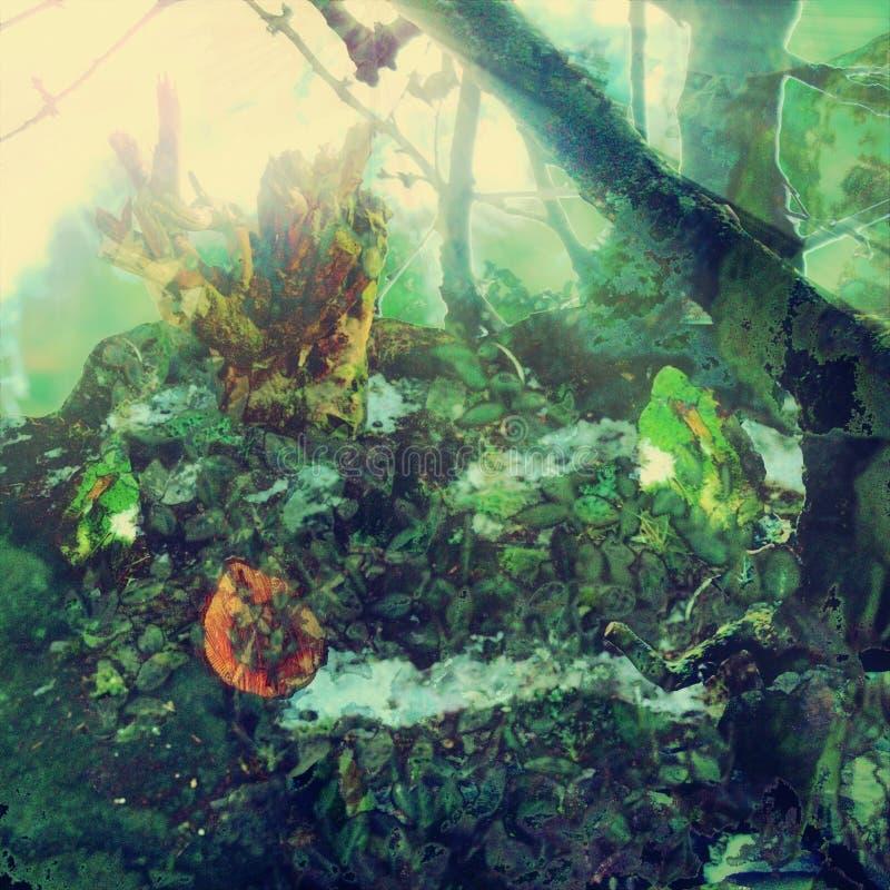 Jardín extraño en color libre illustration
