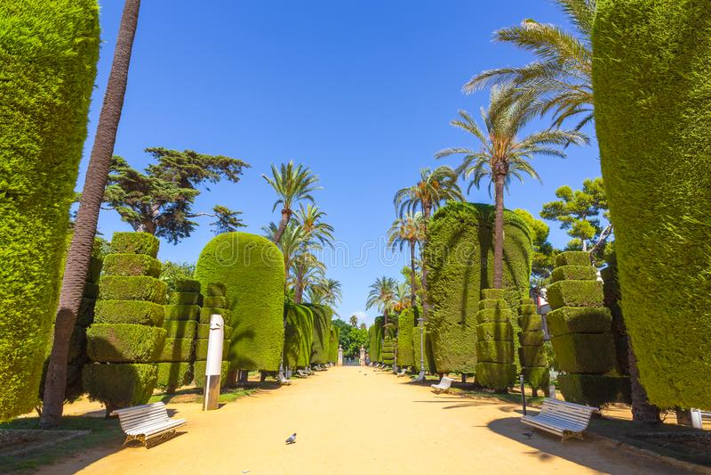 Jardín fantástico en Cádiz, España imágenes de archivo libres de regalías
