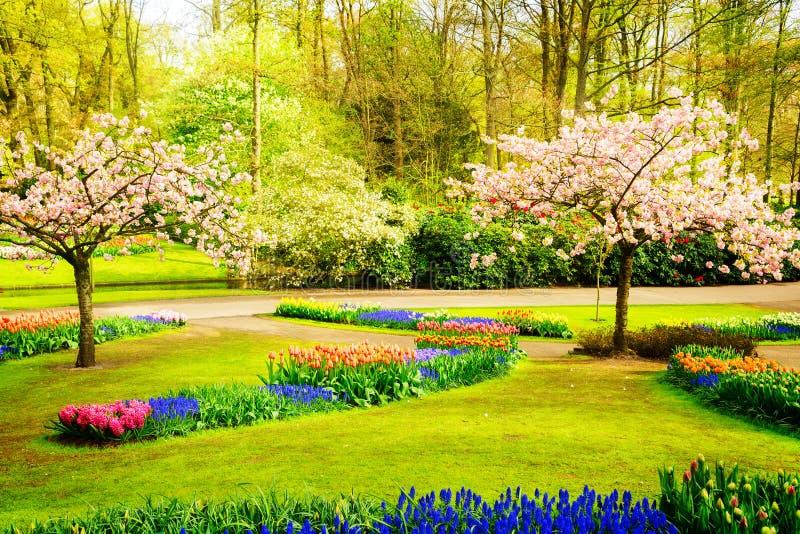 Jardín formal de la primavera foto de archivo