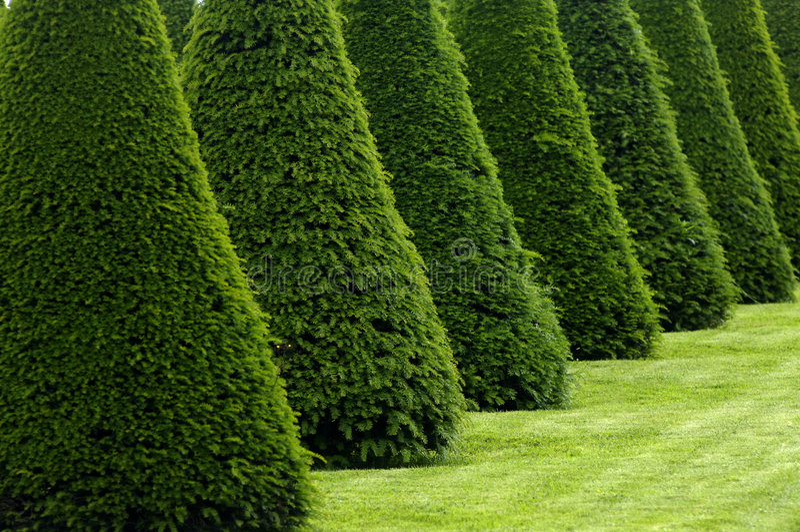 Jardín formal en Francia fotos de archivo