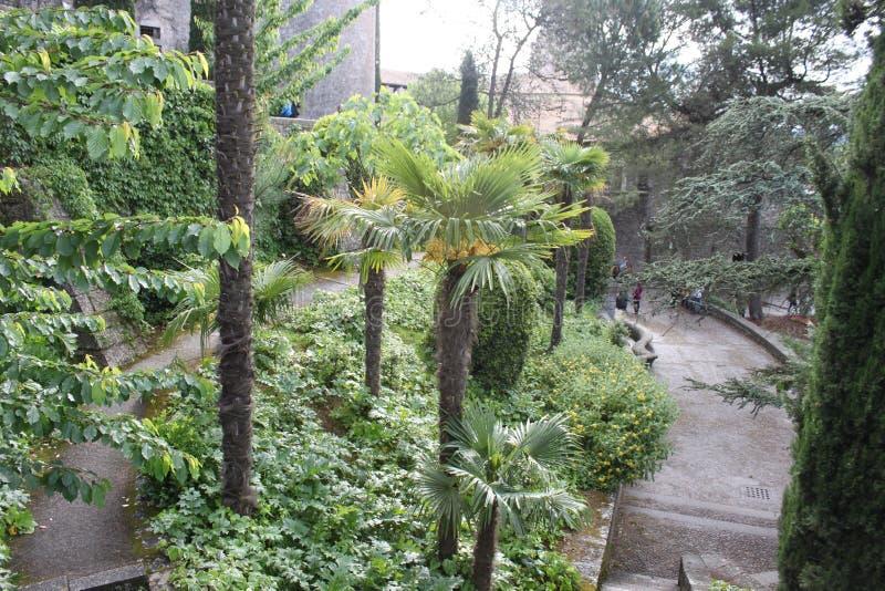 Jardín frondoso con las sombras del verde imagen de archivo libre de regalías