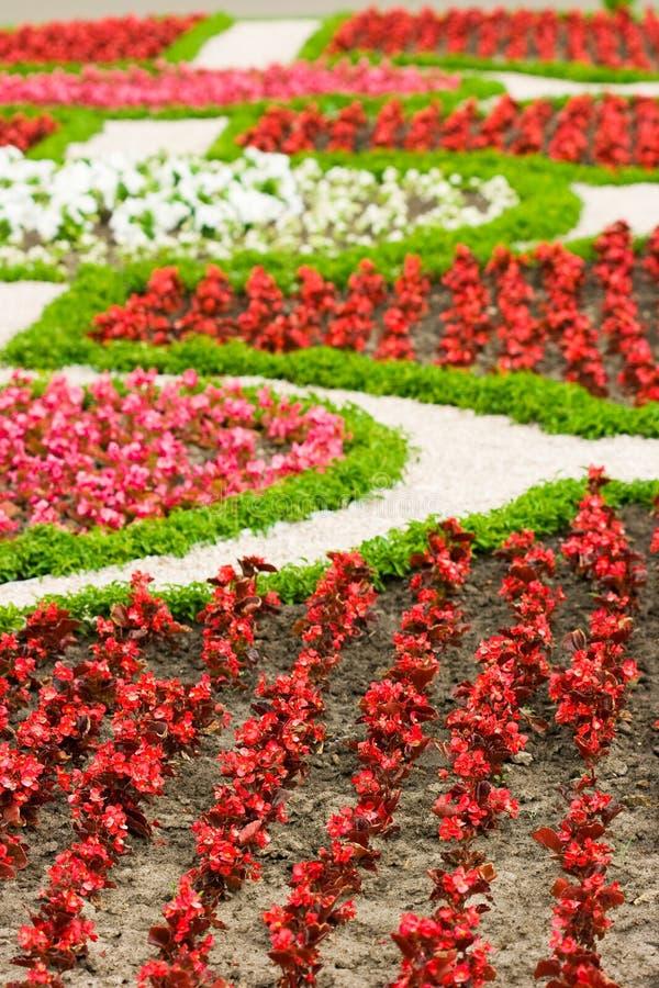 Jardín hermoso con las flores imágenes de archivo libres de regalías