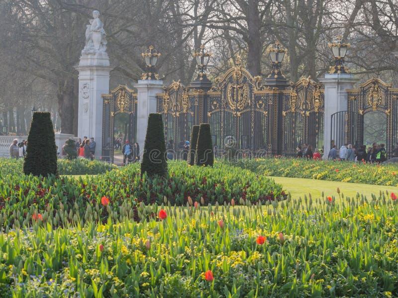 Jardín hermoso de los tulipanes delante del Buckingham Palace fotos de archivo