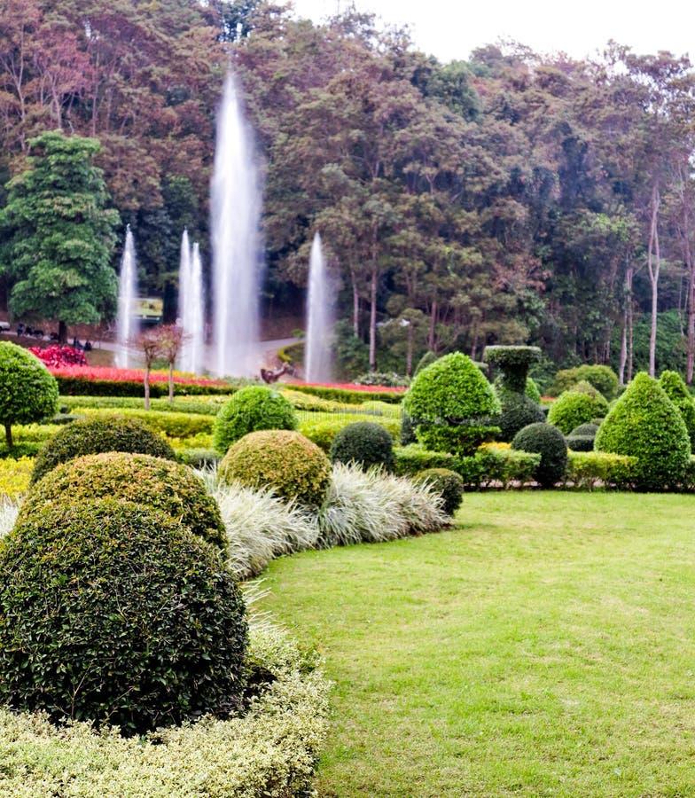 Jardín Hermoso Del Paisaje Florido Del Diseño Foto de archivo ...