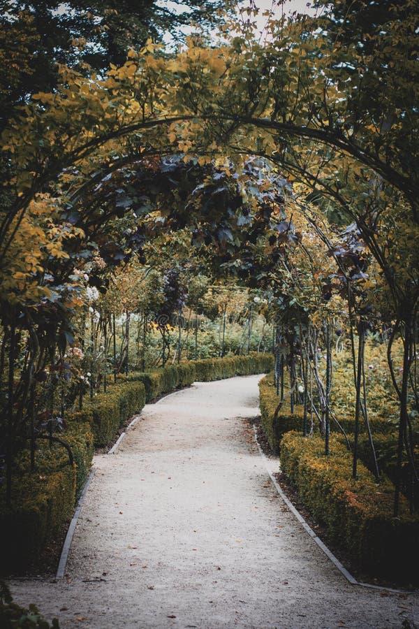 Jardín hermoso en Doncaster imagen de archivo