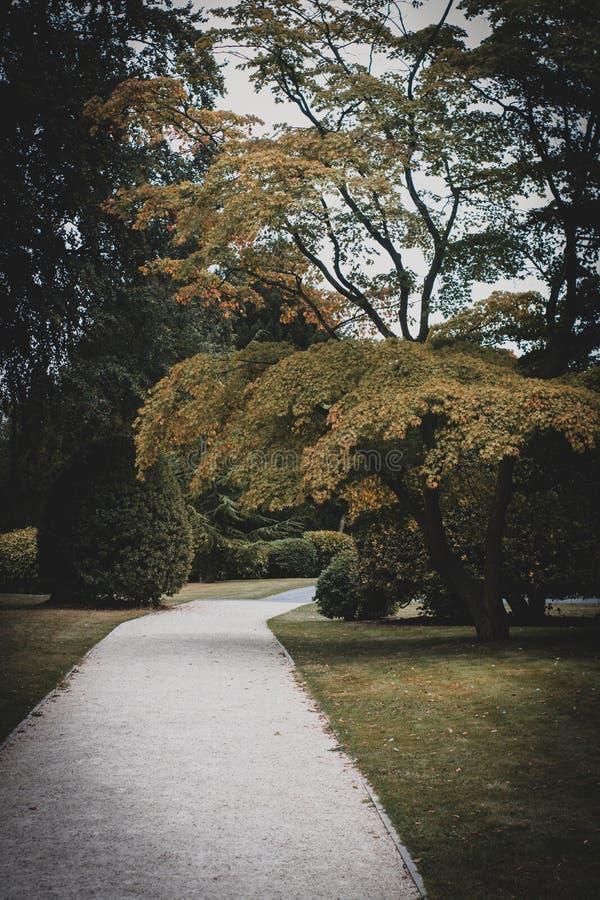 Jardín hermoso en Doncaster fotografía de archivo