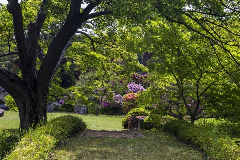 Jardín ideal foto de archivo