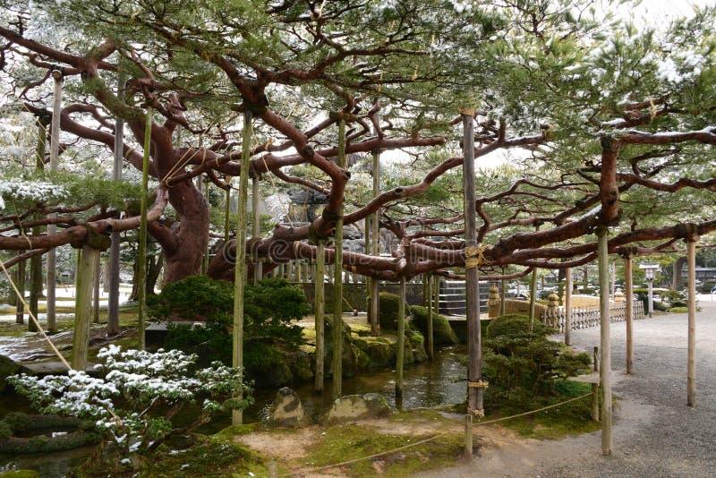 Jardín Japón de Kenrokuen del punto imagen de archivo