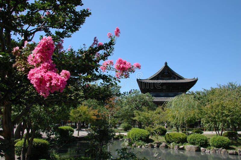 Download Jardín japonés imagen de archivo. Imagen de pino, isla - 1287919
