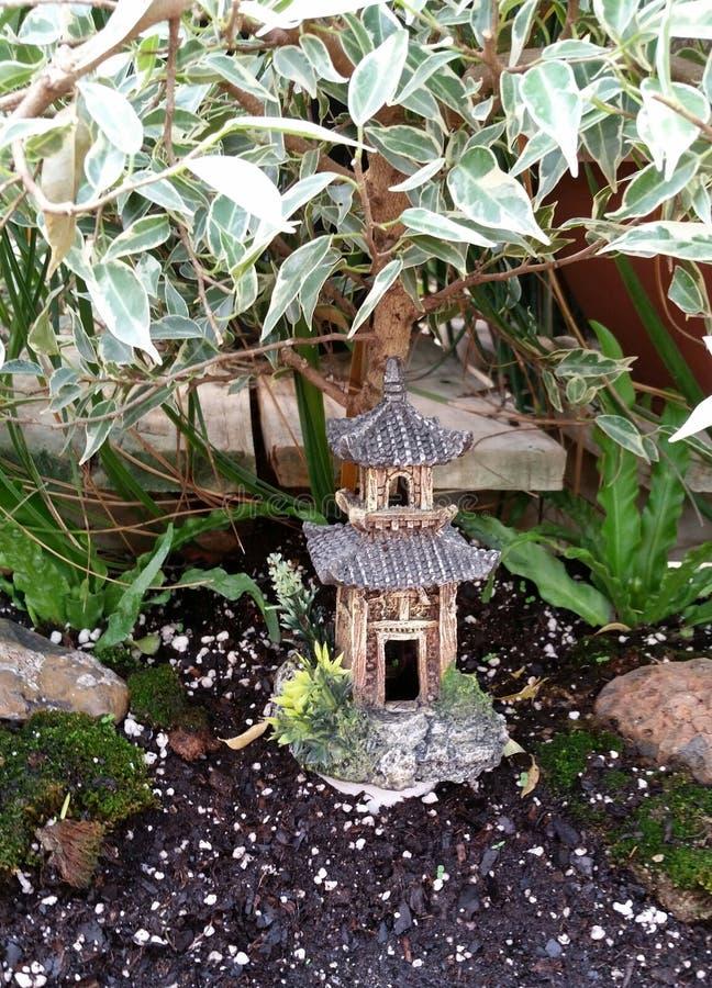 Jardín japonés de los bonsais fotografía de archivo libre de regalías