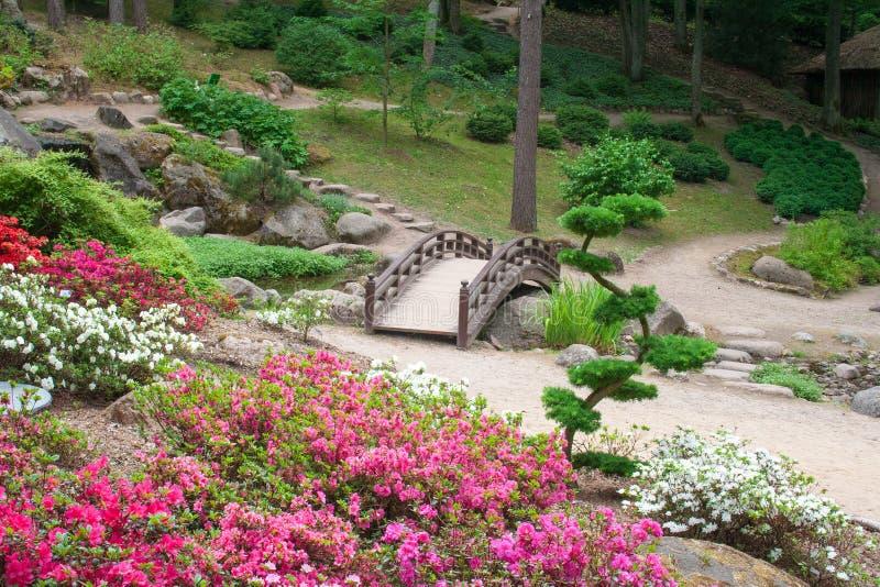 Jardín japonés en un jardín botánico con el puente foto de archivo libre de regalías