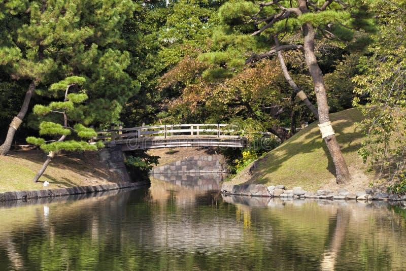 Jard n japon s rom ntico con los rboles de pino del for Arboles jardin japones