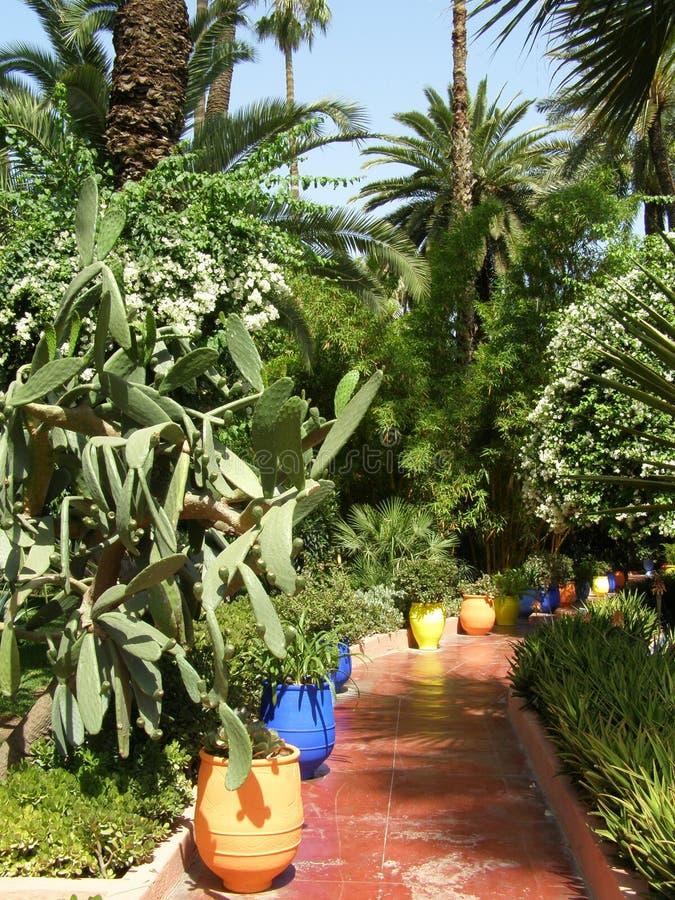 Jardín Majorelle Marrakesh imagen de archivo