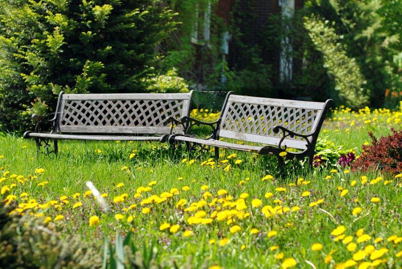 Jardín Overgrown fotos de archivo libres de regalías