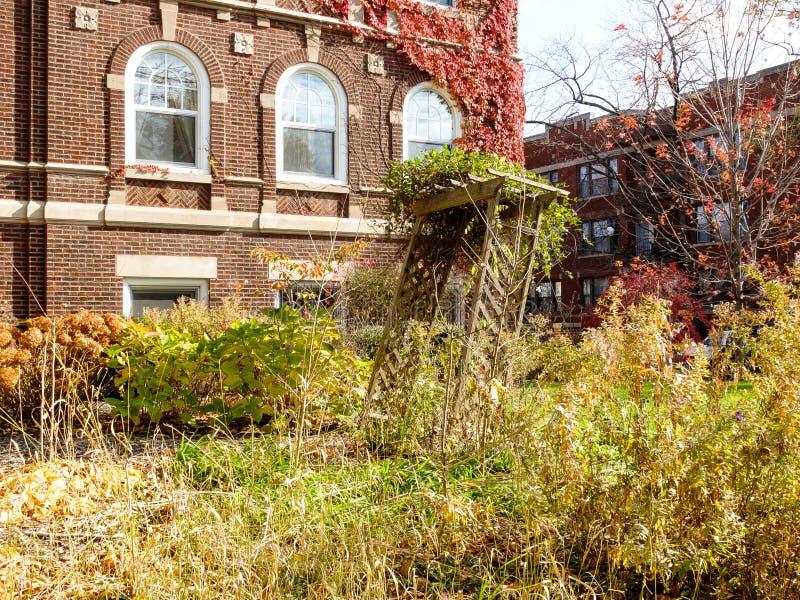 Jardín overgrown de la caída fotografía de archivo libre de regalías