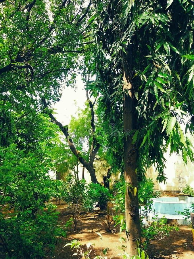 Jardín público hermoso con una fuente de agua en la India fotos de archivo