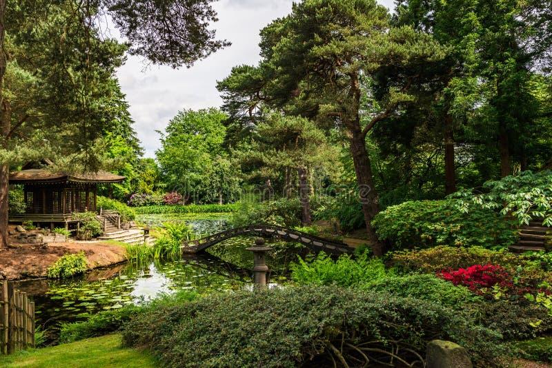 Jardín público inglés en verano imagen de archivo libre de regalías