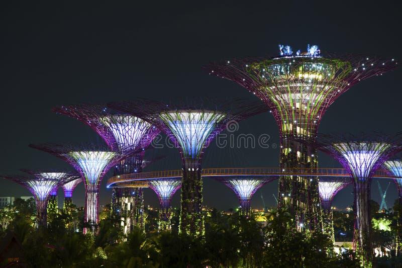 Jardín por la bahía Singapur fotos de archivo