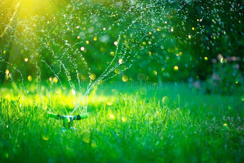 Jardín, riego de la hierba Jardín elegante activado con el sistema de irrigación automático completo de regadera que trabaja en u fotos de archivo