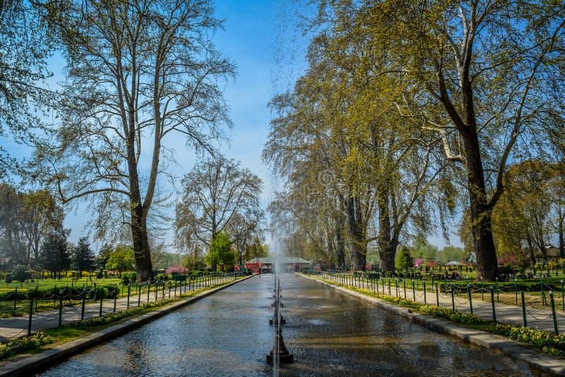 Jardín Shalimar, Srinagar, India fotografía de archivo libre de regalías