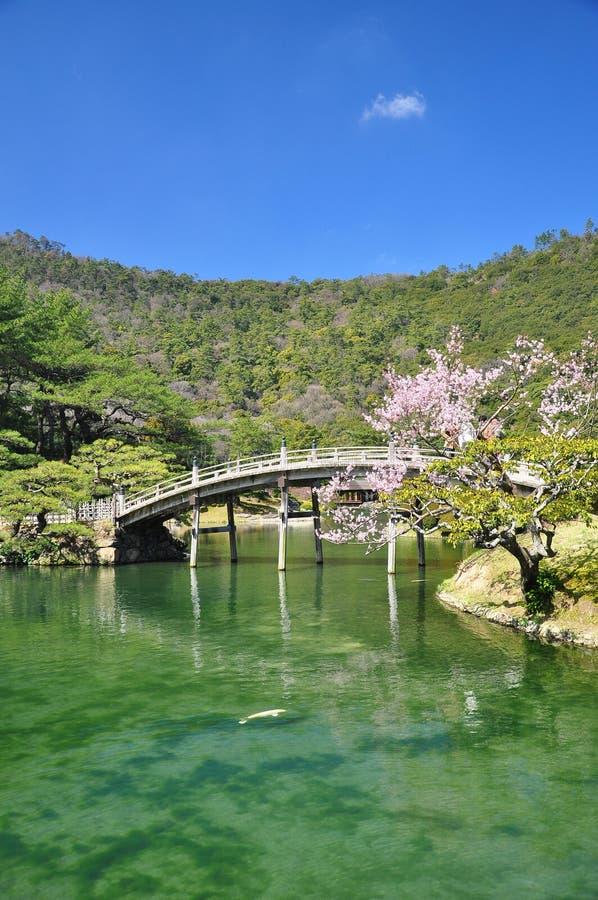 Jardín tradicional japonés, puente de madera. imagen de archivo libre de regalías