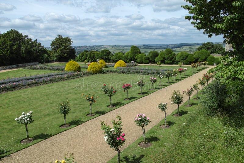 Jardín trasero foto de archivo libre de regalías