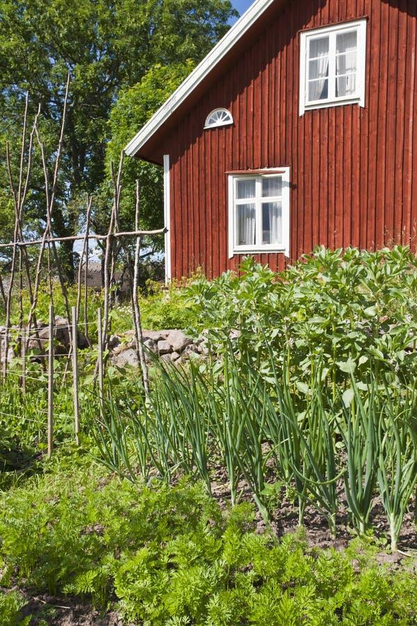 Jardín vegetal fotos de archivo