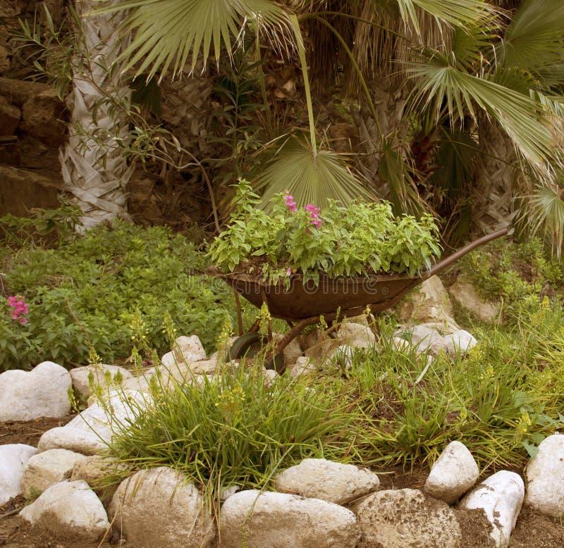 Jardín verde fotografía de archivo