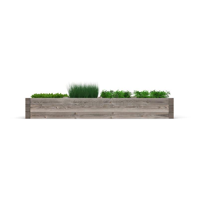Jardín verde en una caja de madera en blanco Vista lateral ilustración 3D stock de ilustración